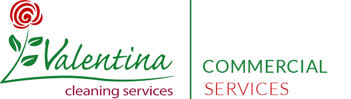 Valentina Cleaning Services Logo